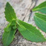 Top 9 Side Effects Of Stevia