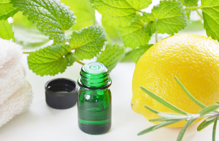 9.-Lemon-Balm-Oil-For-Cold-Sores