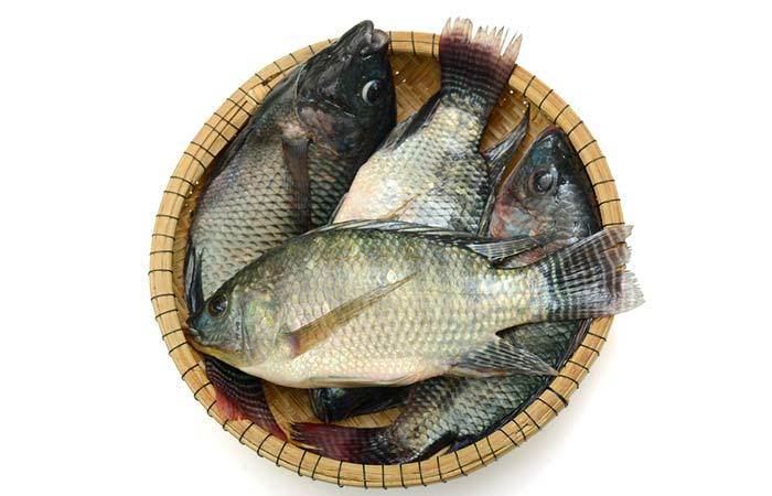 Tilapia Fish – Nutrition Profile