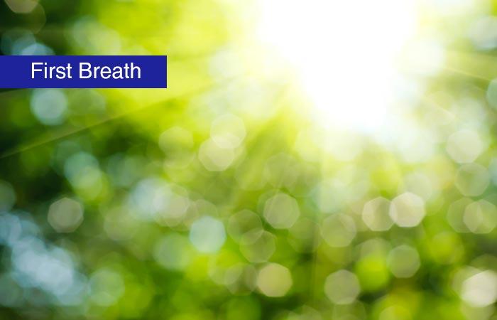 1. First Breath