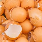 Do You Throw Away Eggshells? After Reading This Article, You Will Never Do That Again!