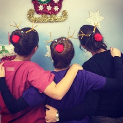 The Red Nose Reindeer Updo