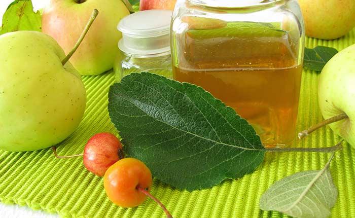 Apple Cider Vinegar Fly Trap