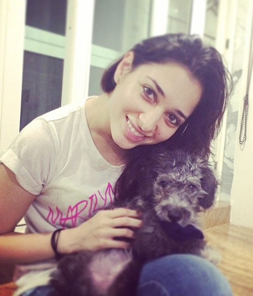 Tamanna's love for dogs