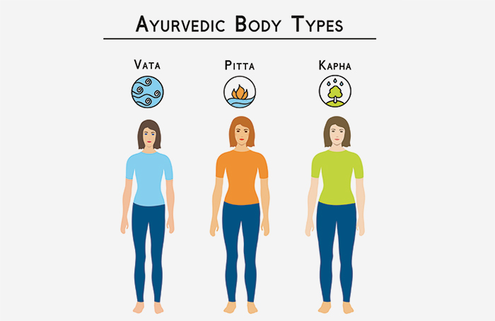 6. The Body Type