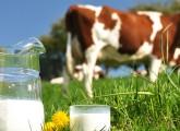 Benefits-Of-Cow-Milk-According-To-Ayurveda0