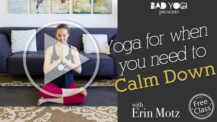 3.-Bad-Yogi-With-Erin-Motz