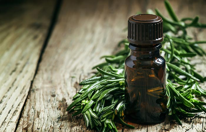 7. Rosemary Oil And Tea Tree Oil For Hair Growth - HOE TEA TREE OIL TE GEBRUIKEN OM HAARGROEI TE BEVORDEREN