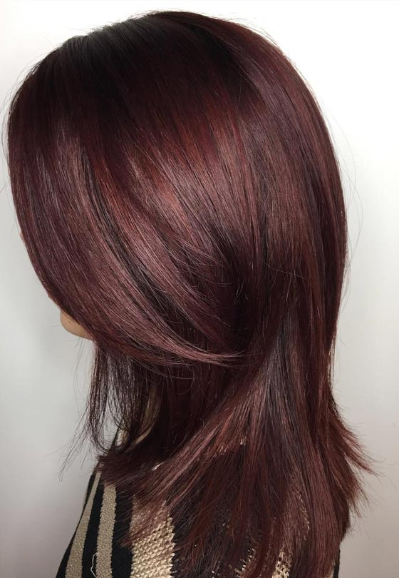 20 Magical Mahogany Hair Color Ideas