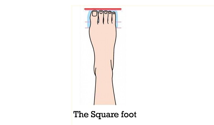 The-Square-Foot