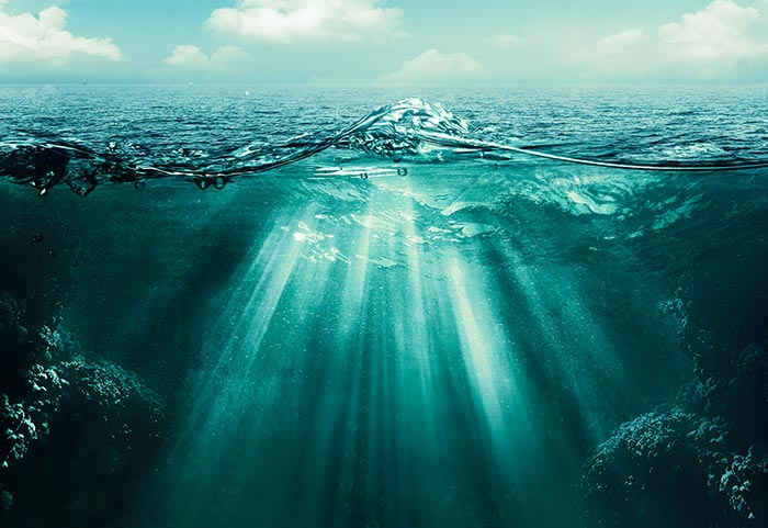 #1 The Ocean