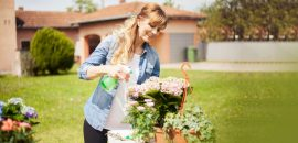 12-Plants-That-Create-Positive-Energy-In-Your-Home