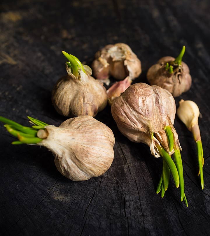 Why You Should Never Throw Away Sprouted Garlic