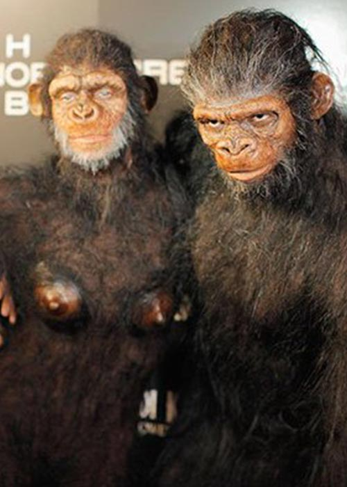 7. 2011 - Second Costume The Same Year, Heidi Klum And Husband Seal Dressed As Apes