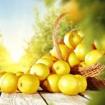 Get Abundant Supply Of Lemons With Just A Seed