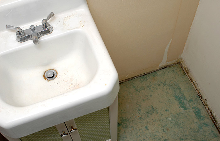 7. Moulds And Mildews On The Wash Basin