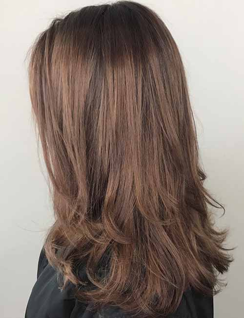 Pictures of light brown hair with dark brown lowlights brown hairs 10 highlights and lowlights styling ideas for light brown hair pmusecretfo Image collections
