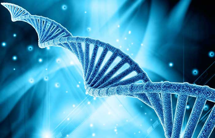 5. Data About Our Genetic Code