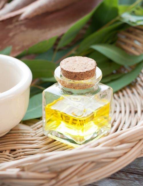 10. Eucalyptus Essential Oil