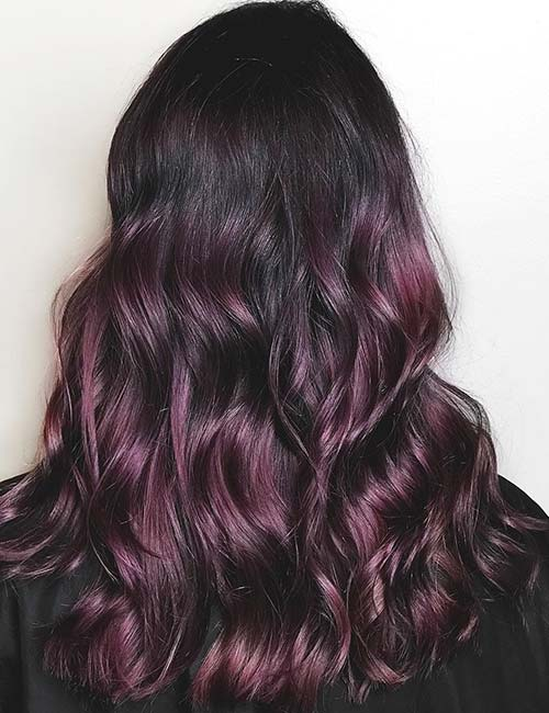 Deep Plum Pion