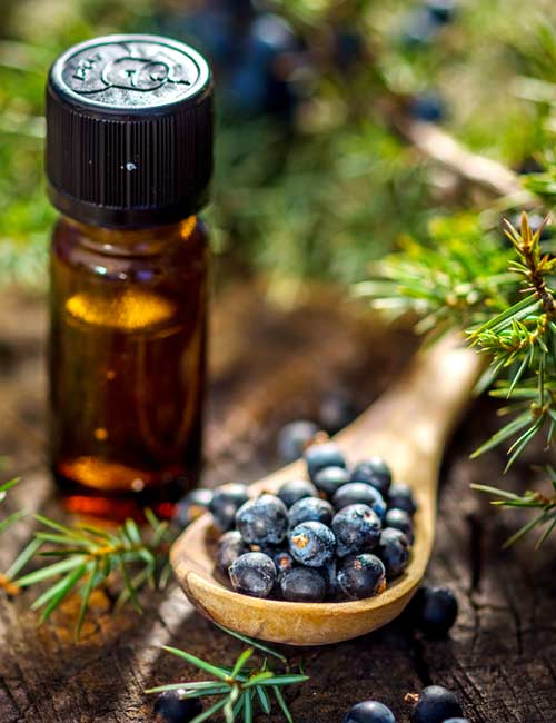 4. Juniper Essential Oil
