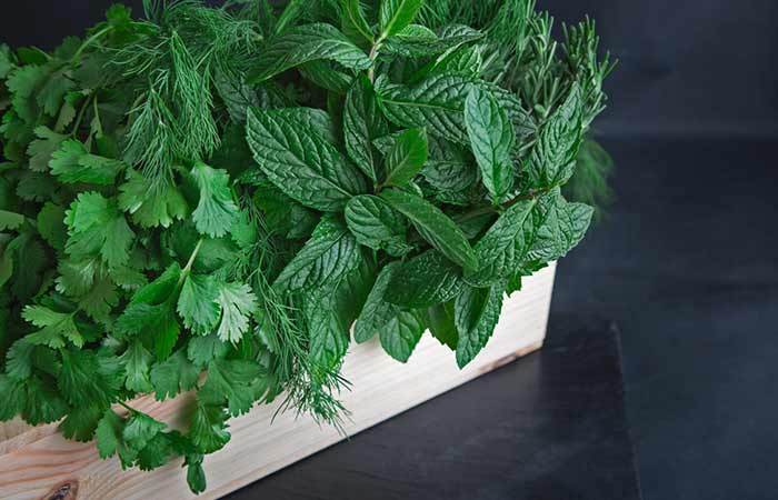 8. Preserving Cooking Herbs