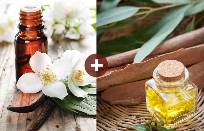 Jasmine And Eucalyptus Essential Oil