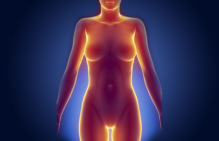 1. Pubic Hair Helps In Body Temperature Regulation
