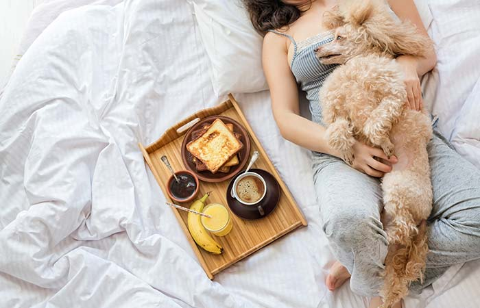 6. Don't Share Your Bed With Your Pets