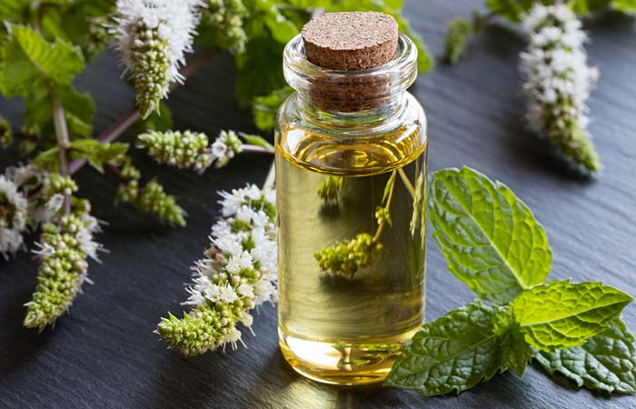 b. Peppermint Essential Oil