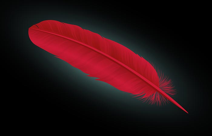 1. The Red Feather