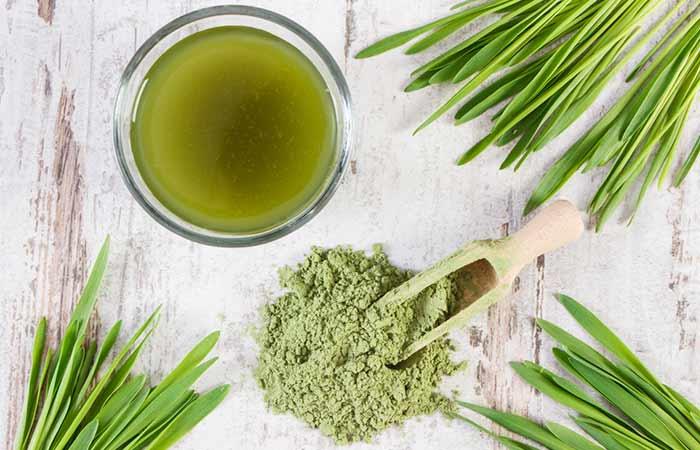 home remedies for dengue fever - Barley Grass