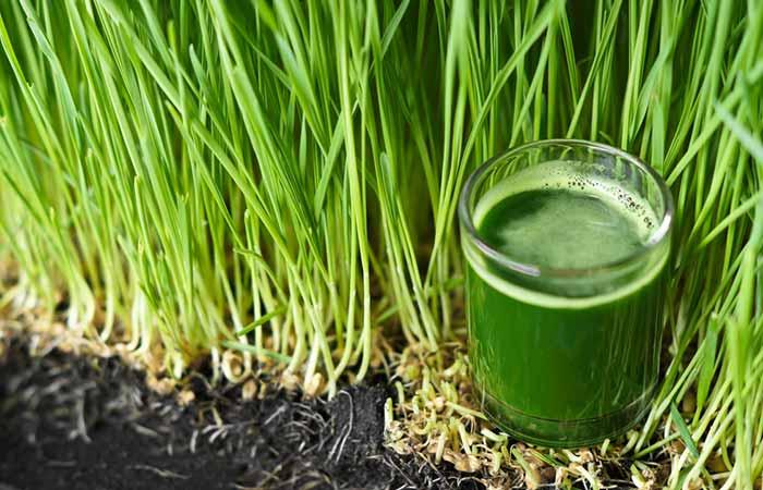 14. Wheatgrass Juice