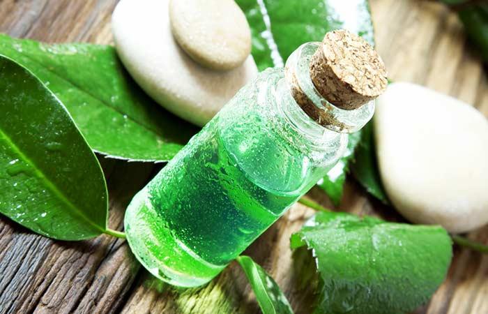 2. Tea Tree Oil And Aloe Vera