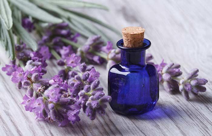4. Lavender Oil And Aloe Vera