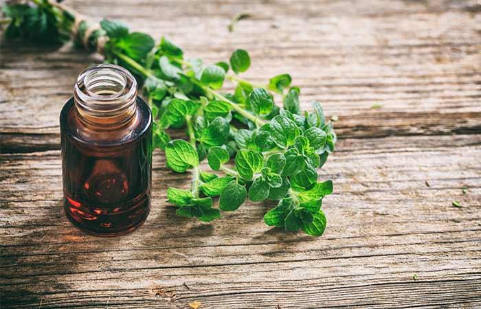Essential Oils For Sinus Infections - Oregano Oil