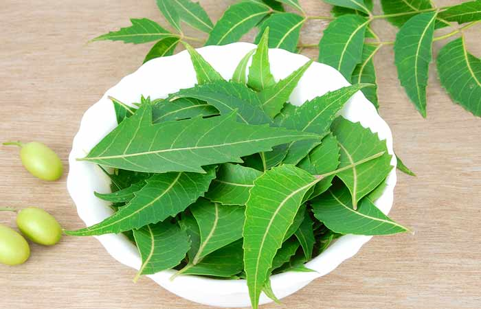 7. Neem Leaves
