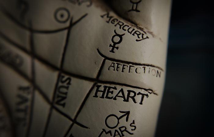 Step 3 Examine The Heart Line