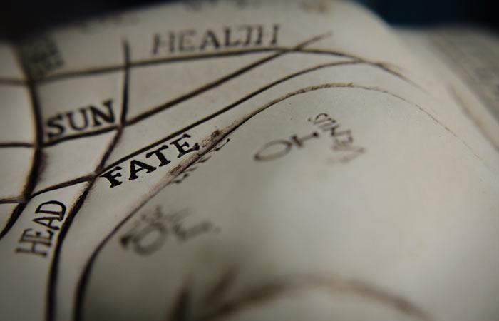 Step 6 Examine The Fate Line