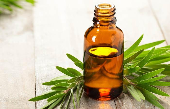 1. Tea Tree Essential Oil