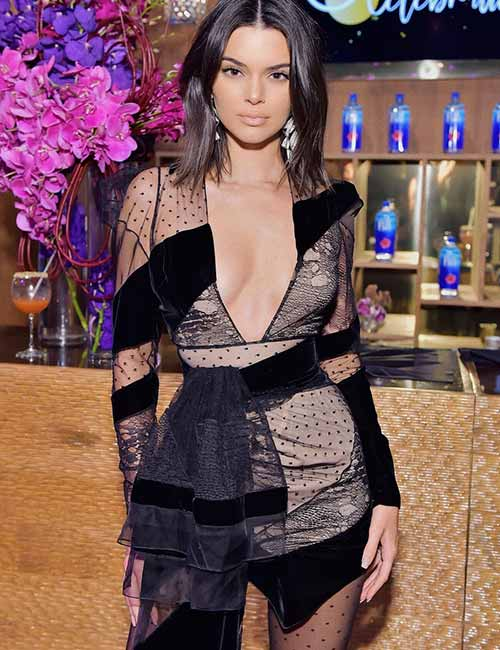 2. Kendall Jenner Sheer Dress