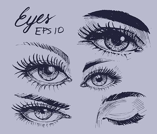 2. Eyes