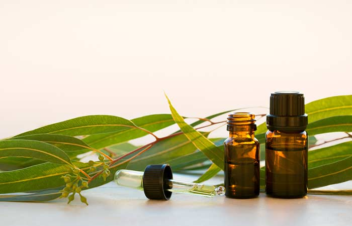 6. Eucalyptus Oil