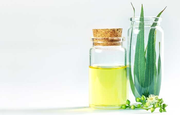 a. Eucalyptus Oil