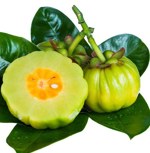 3. Take Garcinia Cambogia Supplement