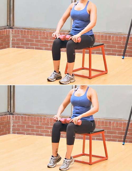 Seated Calf Raises With Weights