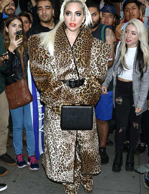 4. Lady Gaga Leopard Print Outfit