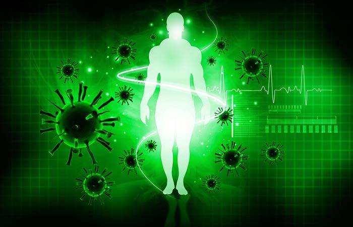 5. CLA Boosts Immunity
