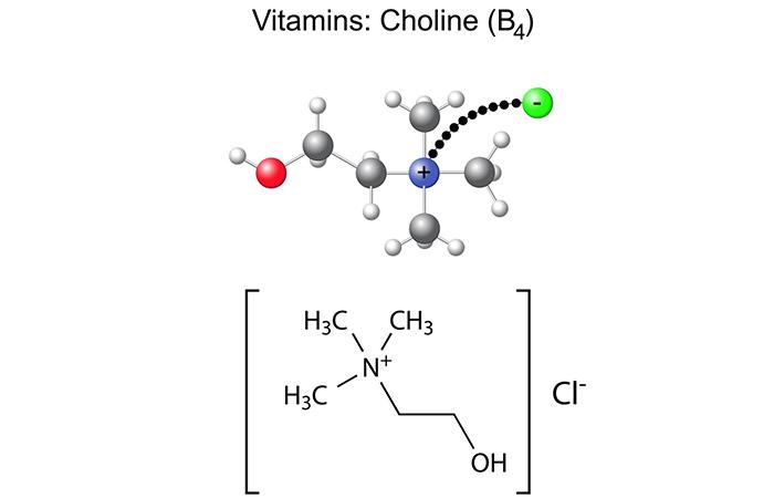 7.-Choline