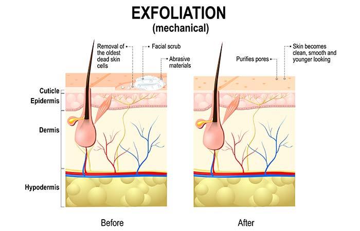 Naturally Exfoliates Skin